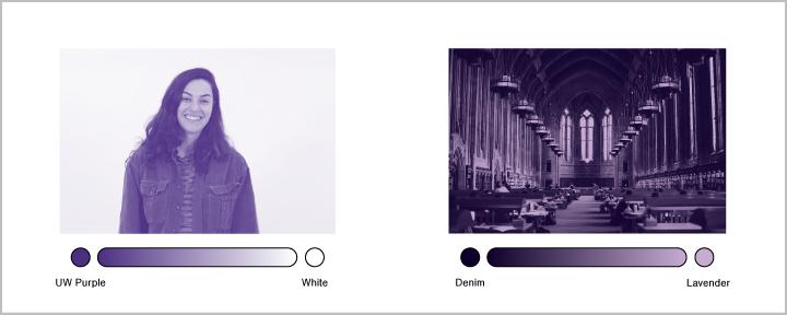 Stylized Image Guideline